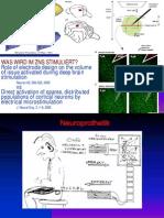 Neuro Pro the Tik