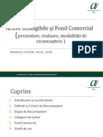 CAFR Active Intangibile si Fond Comercial final.pptx