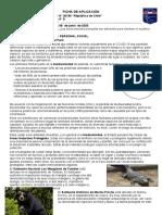 FICHA DE APLICACIÓN