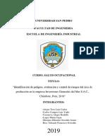 IPERC - ELECTIVO (2).pdf