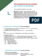 LOS ACCIDENTES GRAMATICALES DEL NOMBRE - ANUAL EGRESADOS (ABRIL - MAYO)