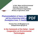 Fine Phytoremediation Heavy Metals