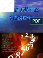 SEMNIFICATIA NUMERELOR PROIECT