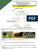 Guía No. 2.3. Dinámica de Poblaciones