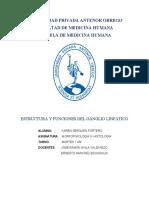 ESTRUCTURA Y FUNCIONES DEL GÁNGLIO LINFÁTICO.docx