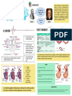 Sistema Sanguineo.pdf
