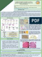 Reporte-de-Laboratorio9_Arias_Paredes