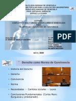 LAMINAS PARA LA EXPOSICIÓN DE MÁRQUEZ MARÍN (CONFLICTO SOCIAL Y ORDENAMIENTO JURÍDICO VENEZOLANO)