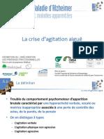 A6.CRISE_AGITATION.pdf