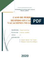 CASO PERICIA
