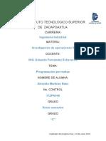 PROGRAMACION POR METAS.docx