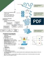 9 Molecular Properties