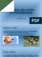 Control del estro en vertebrados