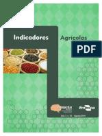 2016_08_Indicadores_agricolas.pdf