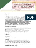 La estructura cognoscitiva del procesamiento de la información.pdf