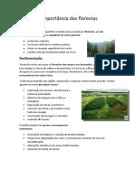 A importância das florestas.docx