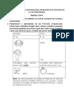 Técnica  PDF METODOLOGÍA PRONALEES