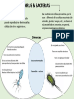 infografia virus bacterias
