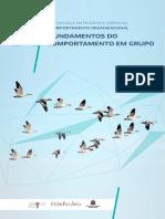 UA 11 - Fundamentos do comportamento em grupo
