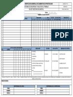 FORMATO INSPECCION GENERAL EPP.pdf