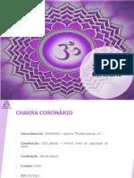 Chakra Coronário.pdf