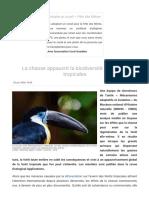 La_chasse_appauvrit_la_biodiversité_des_forêts_tropicales