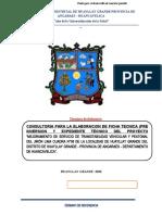 01 TDR elaboracion de expediente jr lima huyallay