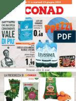 CONAD 2013P Sud.pdf