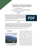 AVANCE_DE_LA_FRONTERA_AGRICOLA_EN_EL_BOS.docx