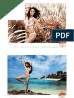 Kingfisher Calendar 2011