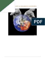 01 Introducción al Desarrollo Sostenible.pdf