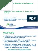 GCE347_2017_Mindfulness_estrategias_para_combatir_el_estres_Luis_Quevedo