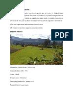 evidencia 2, agricultura de precisión en el cultivo de durazno, SENA