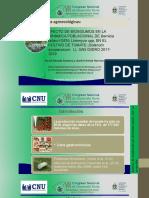 Manejo de agroecológico de Bemisia tabaci y Liriomyza sp en el cultivo de tomate