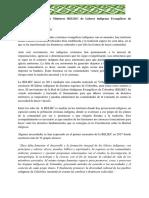 ecos-de-la-evangelizaciòn-por-el-Alto-Rio-Inirda-RELIEC