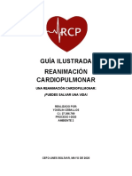 GUÍA ILUSTRADA_rcp