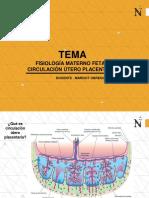 CLASE 2(1) - FISIOLOGIA MATERNO FETAL CIRDULACION UTERO PLACENTARIA