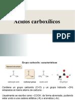 AcidosCarboxilicos 040620