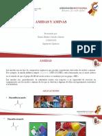 AMINAS Y AMIDAS. EXP