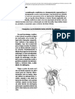 Ciurgia do trauma - Top Knife em portugues 41 a 50.pdf