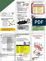 Leaflet_Imunisasi