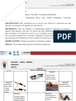FORMATO DE CIRCUITO.doc