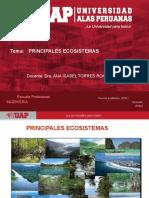 8.- PRINCIPALES ECOSISTEMAS