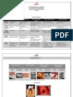 CUADRO DE PATOLOGIAS PULPARES Y PERIAPICALES.pdf