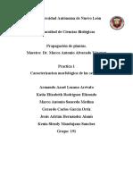REPORTE-PRACTICA-1.docx
