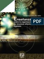 ensenanza_virtual_organizacion_recursos