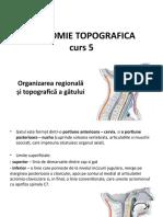 C5 Organizarea topografica a gatului.pptx