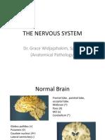 Nervous System, Jan 2011