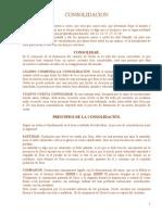 CONSOLIDACION manual