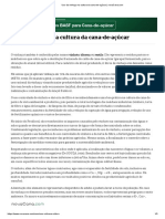 Uso da vinhaça na cultura da cana-de-açúcar _ novaCana.com